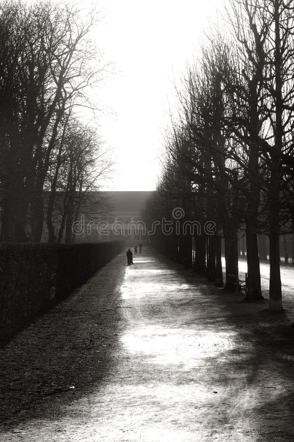 Free Lonely Persons Walking Through The Augarten In Vie Stock Photo - 9376190