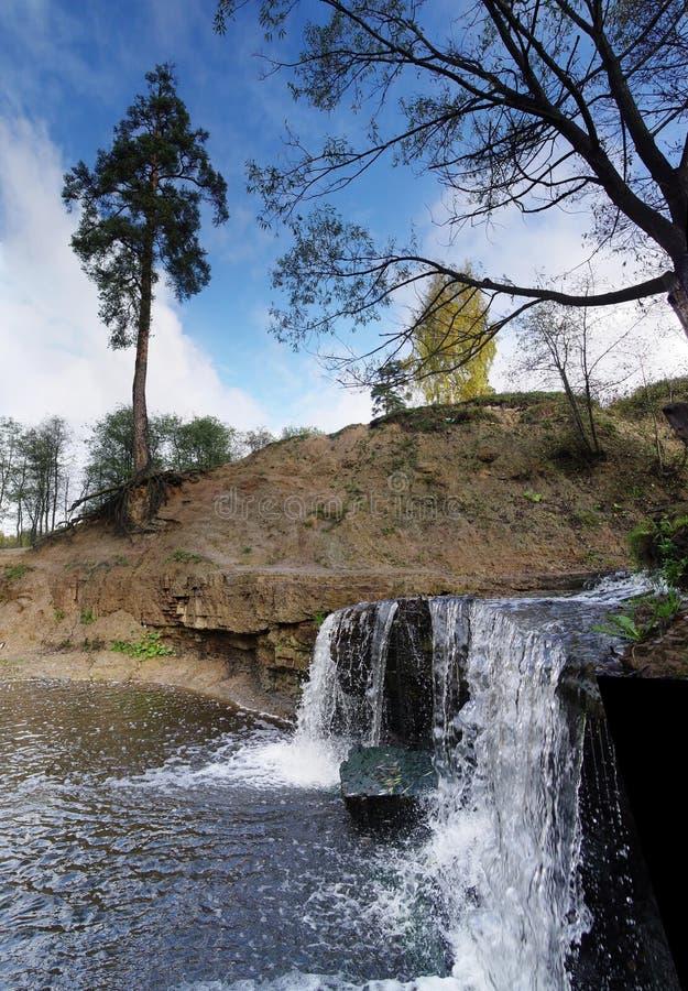 Free Lonely Pine Near Waterfall Stock Photo - 4221880