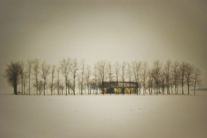 Lonely Ranch. Abandoned, lonely ranch in winter stock photography