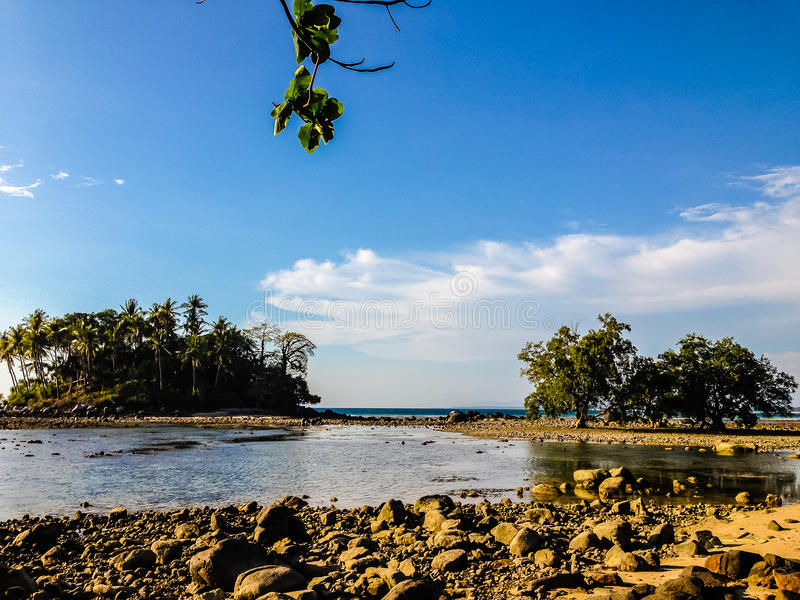 Lonely remote island with rock beach and tree when the sea water. Receded in blue sky and cloudy day background stock image