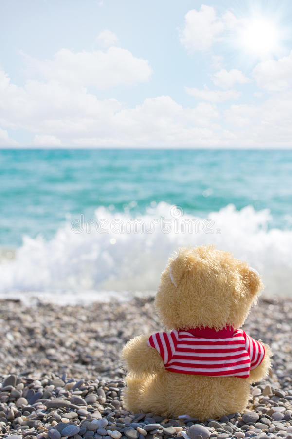 Download Lonely sailor-bear stock photo. Image of vacation, season - 24841196