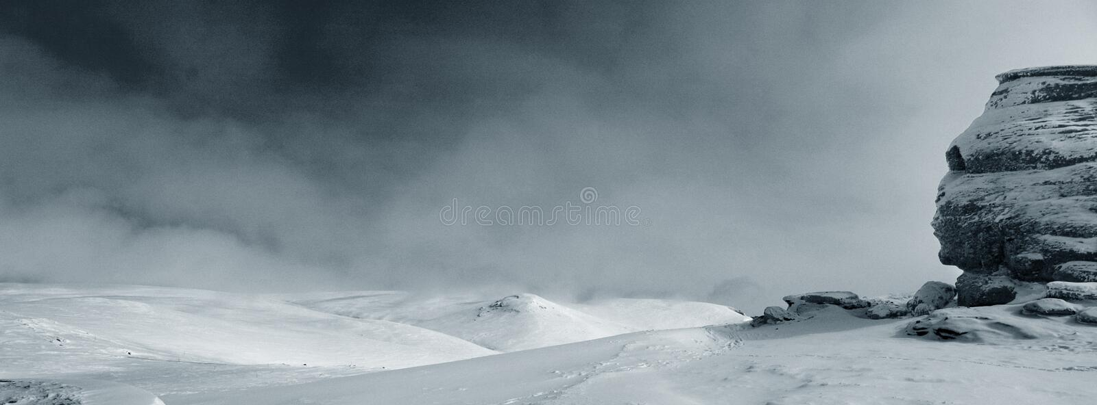 Download Lonely Sfinx Stock Image - Image: 652901