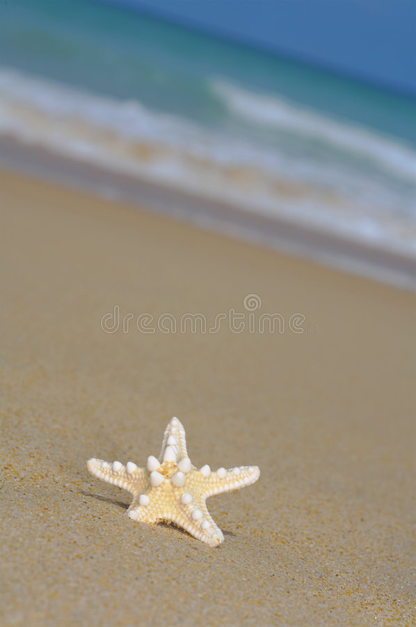 Free Lonely Star Stock Images - 2880794