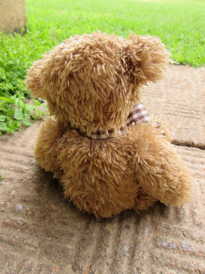 Lonely Teddy Bear on a Path Way. A cute brown teddy bear all alone on a path way with plants in the background stock image