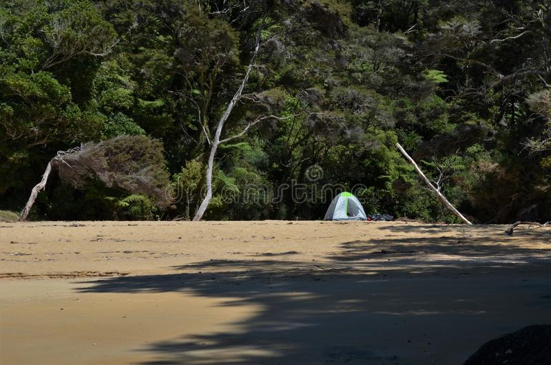 Lonely tent in the middle of abandoned beach with jungle in background stock image