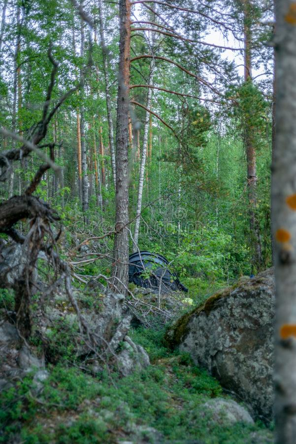 A lonely tent in the wild forest on the shore of the Saimaa lake royalty free stock image