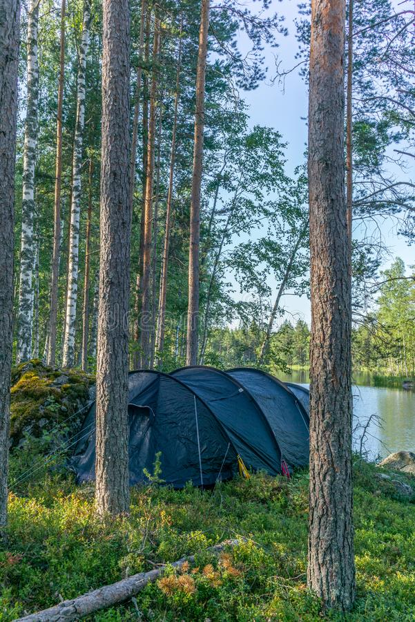 A lonely tent in the wild forest on the shore of the Saimaa lake stock photo