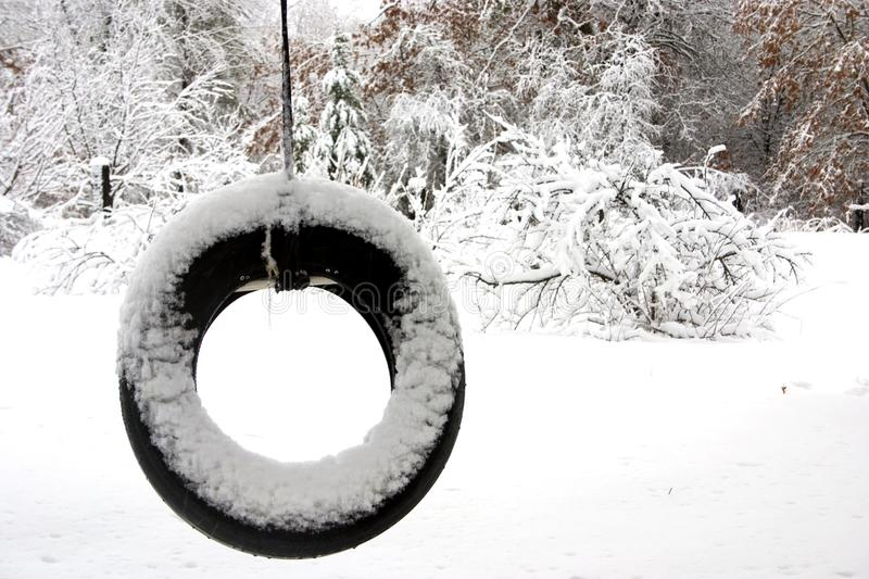 Download Lonely tire swing stock photo. Image of season, swing - 10343190