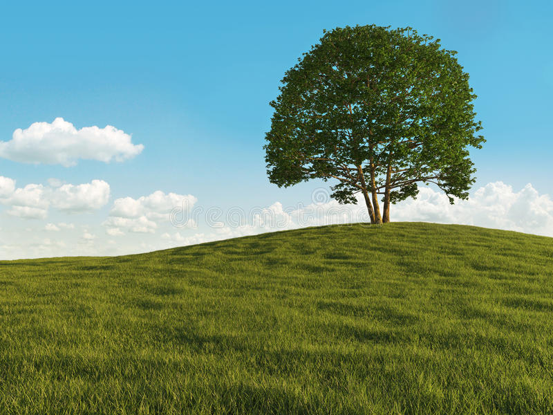 Lonely tree. Landscape of a lonely tree on a meadow hill against a cloudy sky stock illustration