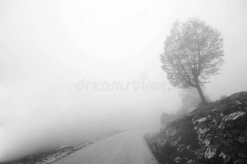 Download Lonely Tree Royalty Free Stock Photo - Image: 28069785