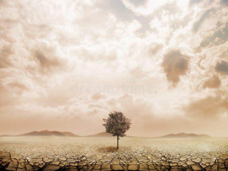 Lonely tree in the desert stock illustration