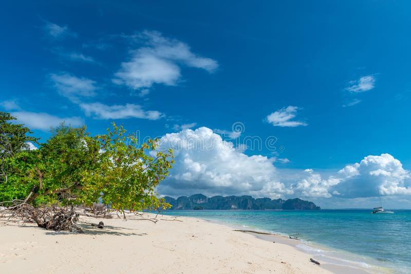Lonely tree and empty beach at Poda Island. Thailand stock photography