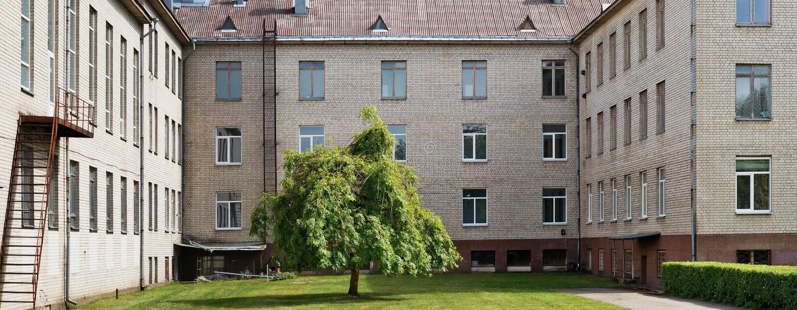 The lonely tree grows on a green lawn of the courtyard of old white brick mass production school. Panoramic collage from several summer outdoor photos stock photos