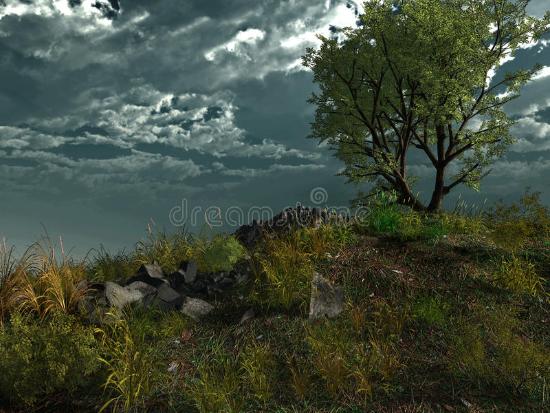 Download Lonely tree on the hill stock illustration. Illustration of cloud - 40159877