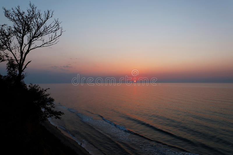 Lonely tree by the sea in the rays of the rising sun.  stock photos
