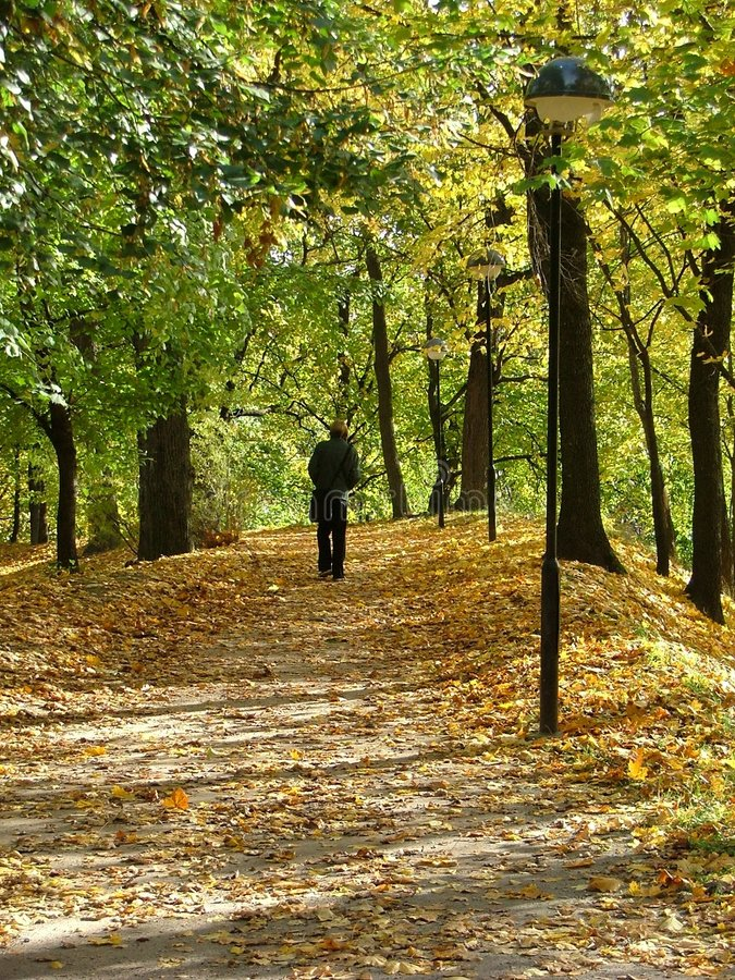 Download Lonely walker stock image. Image of leaf, cozy, walk, sidewalk - 126401
