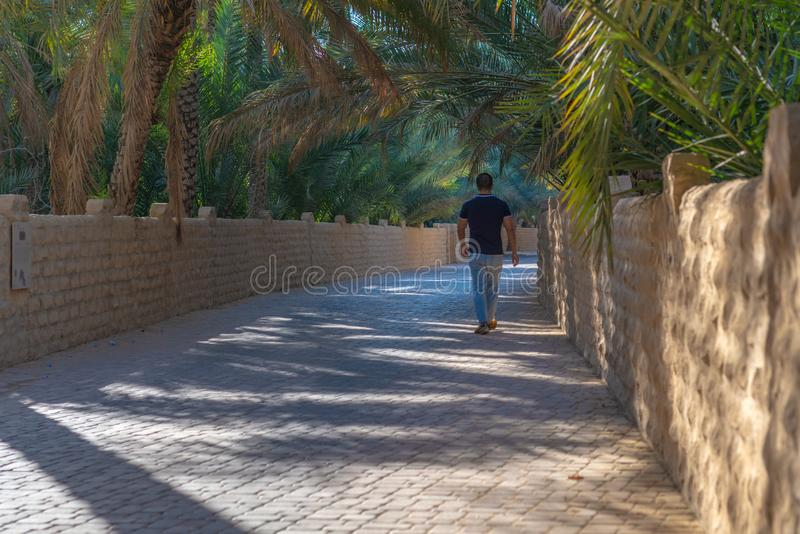 Lonely walker in Al Ain Oasis, United Arab Emirates. Lonely walker wlaking along a shaded alley in Al Ain Oasis, United Arab Emirates royalty free stock photo