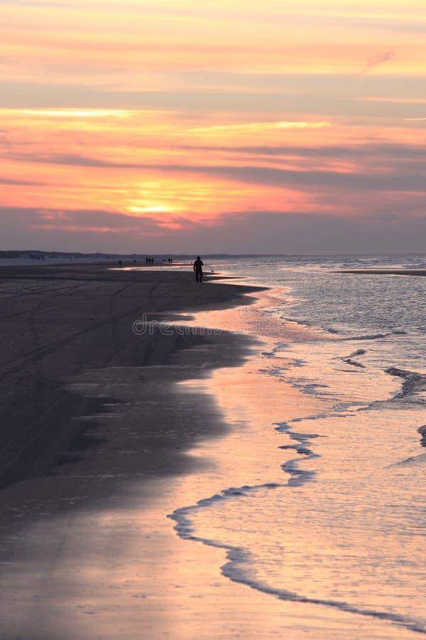 Lonely walker in evening sunlight, Ameland, Holland stock photos