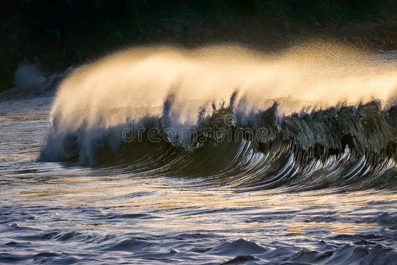 Lonely wave breaking royalty free stock photography