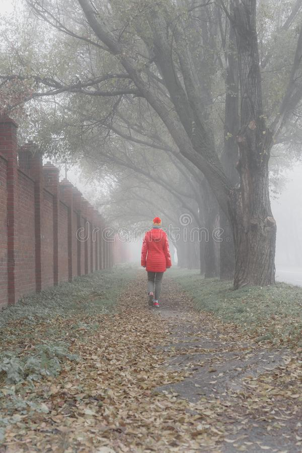 Lonely girl in park. Lonely young girl in walking in foggy autumn park stock image