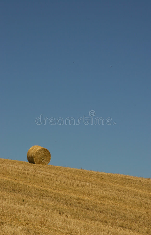 Lonesome bale royalty free stock photography