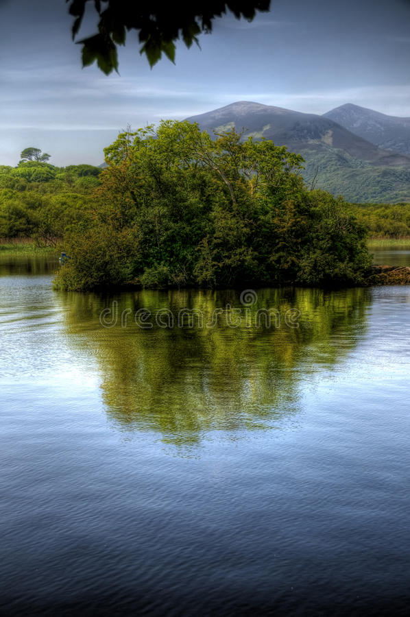 Lonesome Bush In Co Kerry. A scenic image of a small bushy island in a lake in kerry, ireland. The bush is casting a reflection in the water and there are stock photo