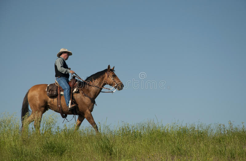 Lonesome Cowboy royalty free stock image