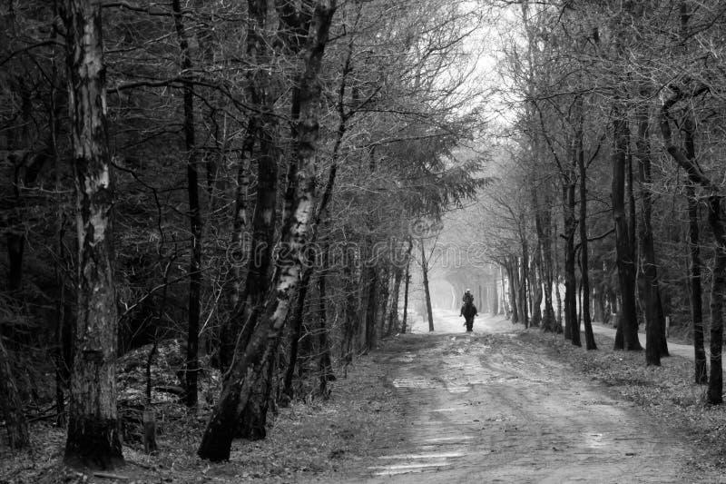 Lonesome rider stock photo