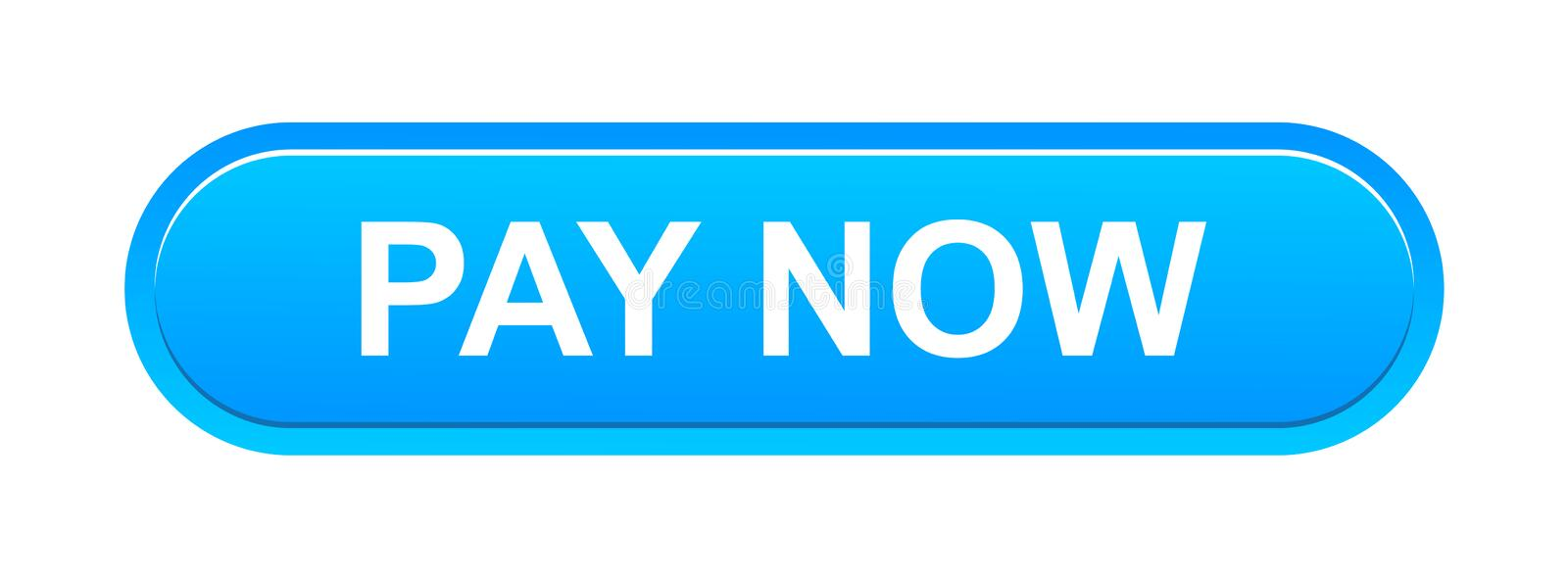 Image result for pay now blue button
