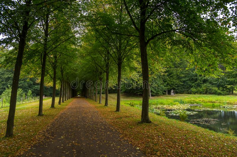 Long avenue in Palace gardens, Fredensborg, Denmark. Long avenue in Palace gardens. The largest historical gardens in the Baroque style, Fredensborg, Denmark stock image