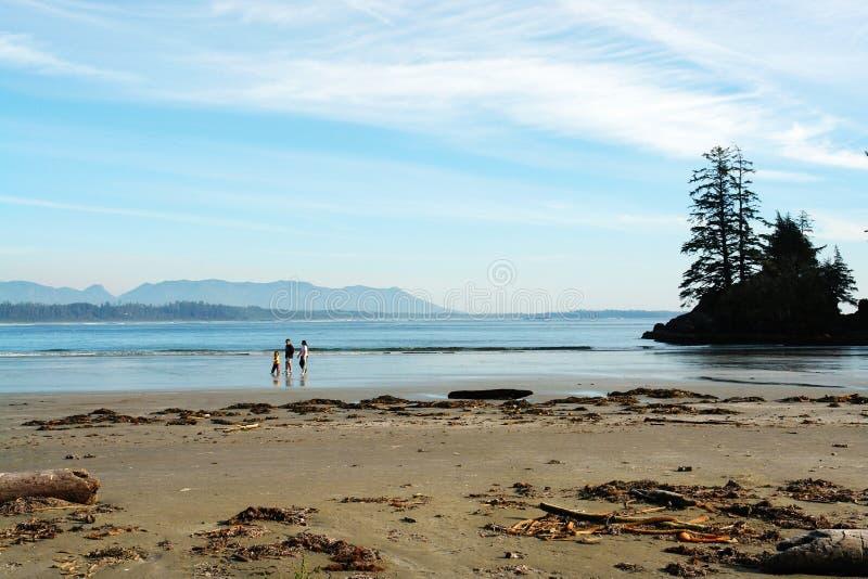 Long beach. View of a family walking on long beach, tofino, british columbia royalty free stock photos