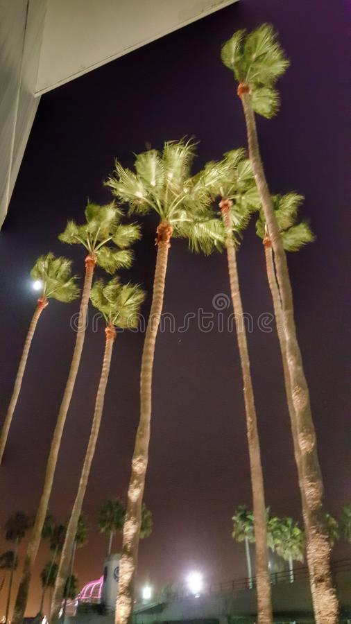 Long Beach California immagini stock libere da diritti