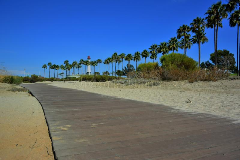 Long Beach Palm Trees. Palm trees leading the way to a lighthouse in Long Beach stock photo