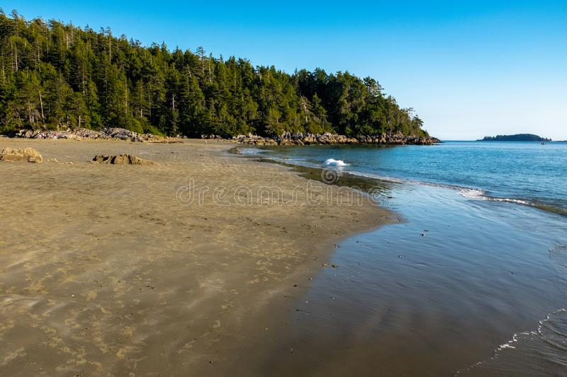 Long Beach Tofino, Vancouver Island, Canada, shot late afternoon with a bright blue sky, a few people in the far distance stock photography