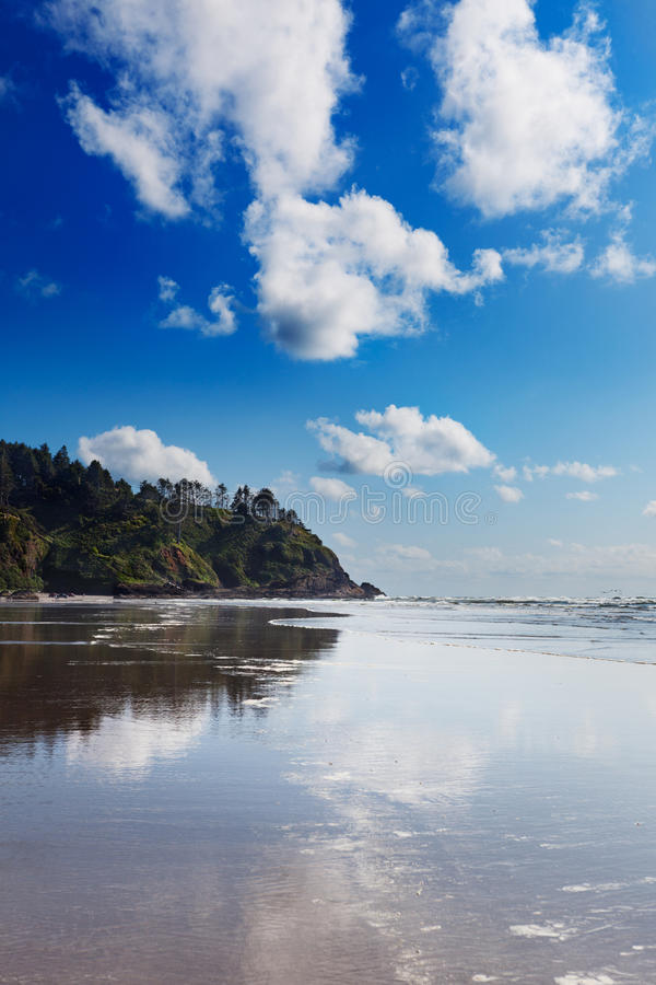 Long Beach, Washington. At North Head on Cape Disappointment on a sunny Spring afternoon royalty free stock photography