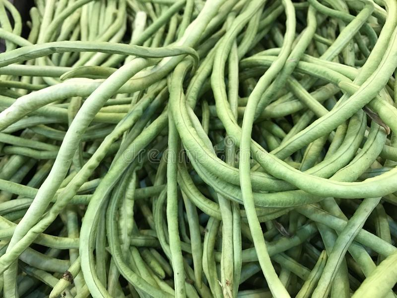 Long bean. A background of Chinese long beans royalty free stock images
