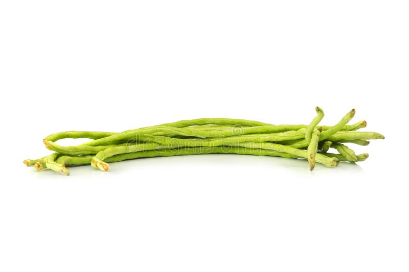 Long bean isolated on white background royalty free stock photo