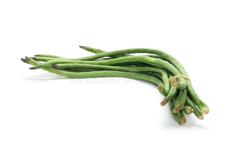 Long Beans. Bunch of Long Beans on White Background royalty free stock photos