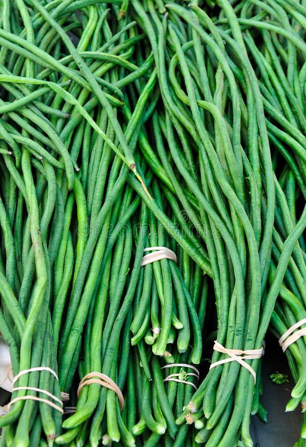 Long beans stock photography