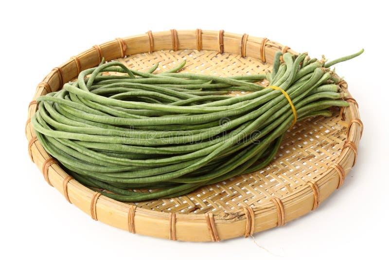 Long beans. Fresh long beans on a white royalty free stock photo