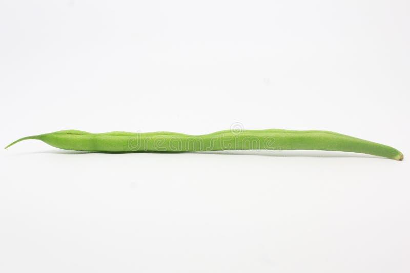 Long Beans. Object bean stock photos