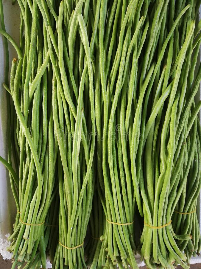 Long beans royalty free stock photography