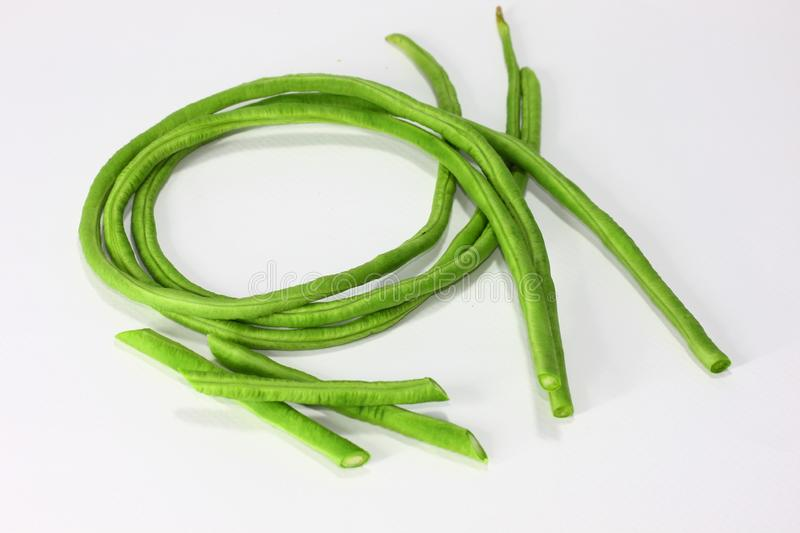 Long Beans.These long beans are similar to French and can be prepared and cooked in the same way. These long beans are similar to French and can be prepared and stock photography