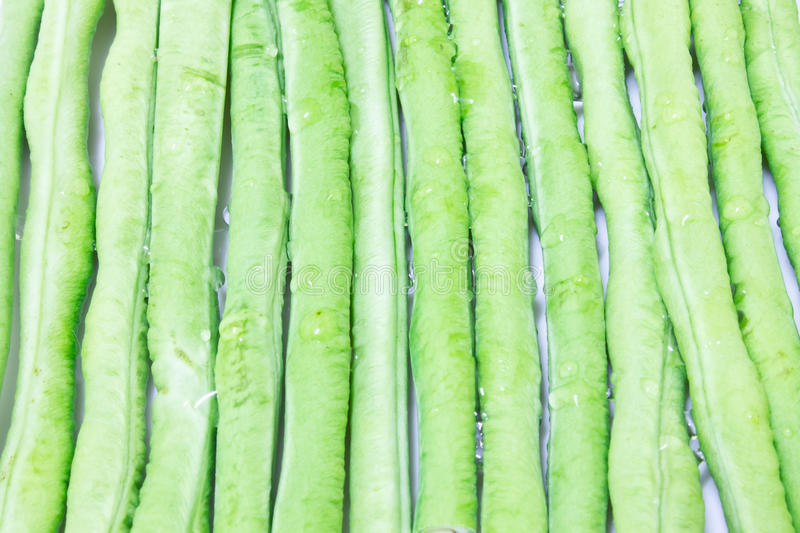 Long Beans royalty free stock image