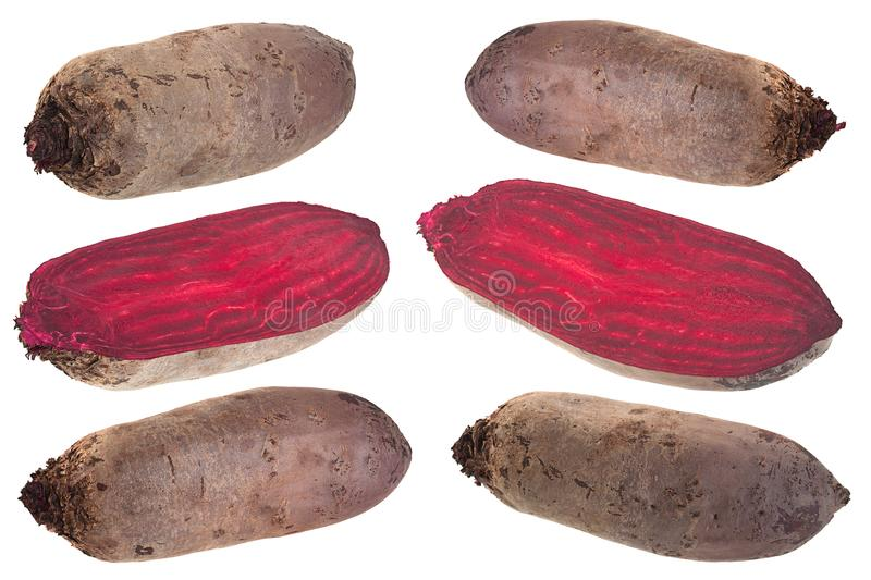 Long beet root collection on white. Long beet root vegetable set closeup isolated on white royalty free stock image