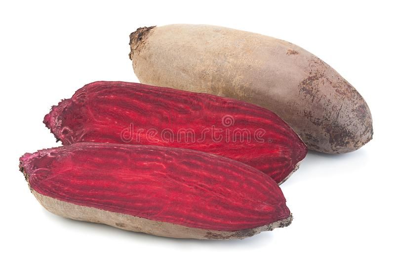 Long beet root vegetable on white. Long beet root vegetable closeup isolated on white royalty free stock images