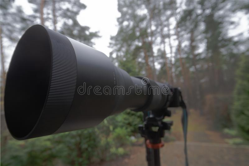 Long black zoom lens with focal length 150 mm to 600 mm on a mirrorless camera on a tripod stock images