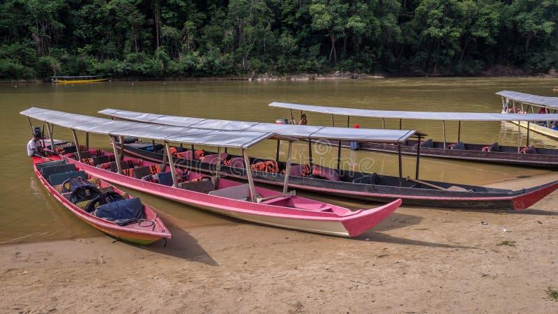 Long boats in rainforest in Taman Negara, Malaysia royalty free stock photo