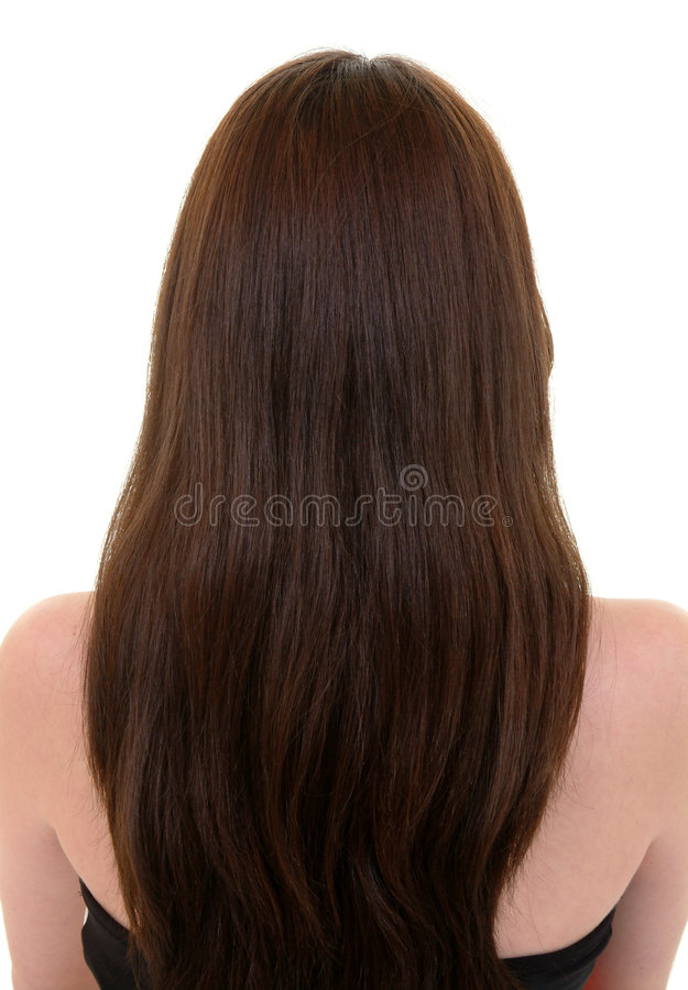 Download Long Brown Hair stock image. Image of arms, white, girl - 65809