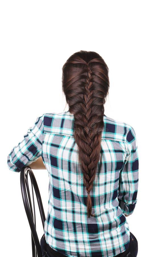 Long Brown Hair Braid. Back View. royalty free stock photos